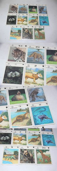 Animals and Nature 31744: New Illustrated Wildlife Treasury Cards Home School Educational Learning Animals -> BUY IT NOW ONLY: $34.93 on eBay!