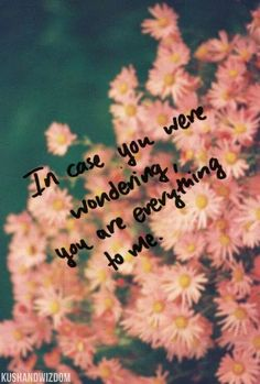In case you were wondering, you're everything to me.