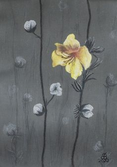 Az utlsó virág (The last flower) ll. 42×30 cm pastell, Ingres paper Dandelion, Paper, Flowers, Plants, Painting, Art, Pastel, Art Background, Dandelions
