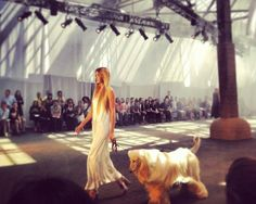 Afghan hound on the runway for Jen Kao spring 2014 show #nyfw #cute!