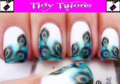 PRETTY PEACOCK Nail Art Water Transfers Decals