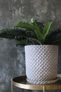 Waffled Circular Concrete Planter With Tray