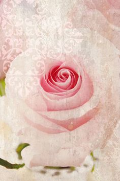 No place is more secure than to be in your loving heart.~Ꭺиgєℓ'ʂ Ꮮσνє