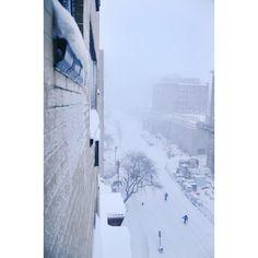 #snowzilla #stormjonas #jonas #winterstorm #blizzard2016 #blizzardjonas #blizzard #snowmageddon #snow #snowdaze #winter by causeycommotion