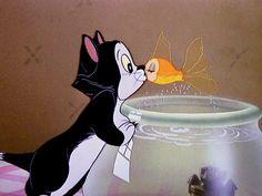 Figaro and Cleo #Pinnocho #1943