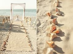Beach Wedding Aisle - no flowers needed. Leaving everything white for the ceremony. I'm bringing my own starfishes and conch shells for the aisle. Bought from Ebay.   12 Extra Large Starfishes I bought from Ebay seller - anyname99 for $46. 6 Extra Large Conch Shells from Ebay seller  - worldwidewildlifeproducts for $45.