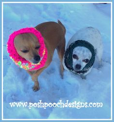 Posh Pooch Designs Dog Clothes: Dog Snood Crochet Pattern - For All Size Dogs
