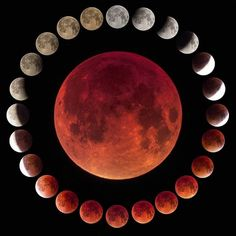 This is a composition of 24 different pictures taken along a Lunar eclipse (Sept In the center is included the maximum of the total eclipse. ⠀⠀⠀⠀⠀⠀⠀⠀⠀ again the moon, Earth and sun lined up to create a total lunar eclipse. Eclipse Lunar, Total Eclipse, Blood Moon, Earth From Space, Moon Art, Moon Phases, Cosmos, Bunt, Galaxies