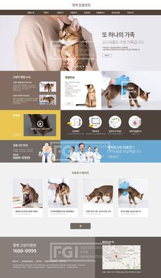 B052, 프리진, 웹디자인, 웹템플릿, 웹, 웹디자인, 반응형, 원페이지, 원스크롤링, 템플릿, 메인, 서브, 세트, 비즈니스, 병원, 의료, 수의학, 동물, 동물병원, 반려동물, 개, 강아지, 고양이, 인사말, #유토이미지 Simple Website Design, Website Design Inspiration, Best Web Design, Web Design Trends, Web Layout, Layout Design, Pet Websites, Landing Page Design, Thing 1