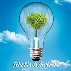 21 de setembro de 2012  Árvores são ótimas ideias que nasceram do coração de Deus para o teu bem-estar e viver saudável!