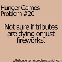 We watched this the other night, and someone started shooting fireworks right as Katniss was counting the 13 tributes gone! :O we heard 22