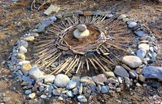 3 land art yurta bois flottés renouée et pierres