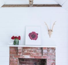 The Rose by Annabelle Lambie | Limited Edition Print for The Arthouse Collective