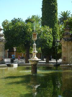 Fuente en Patio de los Naranjos(Mezquita Catedral)Preciosa foto y refrescante de una de las Bodegas con mas lustre de Cordoba.Bodegas Mezquita