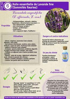 Huile essentielle de lavande fine (Lavandula angustifolia) : propriétés et utilisation sans danger
