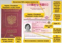 Как выглядит загранпаспорт #passport