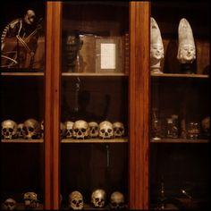 Anthropology Museum, Madrid, Spain 2010 © Incognita Nom de Plume