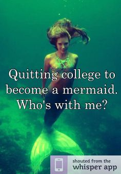 Quitting college to become a mermaid. Who's with me?
