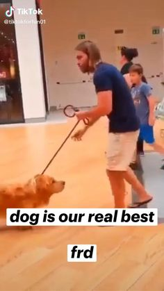Cute Baby Dogs, Cute Dogs And Puppies, Cute Babies, Doggies, Crazy Funny Videos, Funny Animal Videos, Funny Animals, Cute Little Animals, Beautiful Creatures