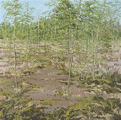 """Study For Little Marsh Spring,"" Neil Welliver, 1985, oil on canvas, 24 x 24"", Alexandre Gallery."