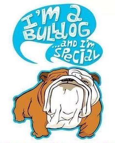 Bulldog Cartoon Stock Photos, Images, & Pictures – Images) - Page 4 Mini English Bulldogs, English Bulldog Funny, British Bulldog, Bulldog Cartoon, Bulldog Mascot, Baby Puppies, Bulldog Puppies, Bulldog Drawing, Bulldogs Ingles