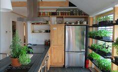 Домашний мини-сад для гурманов