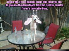 OMG hilarious!