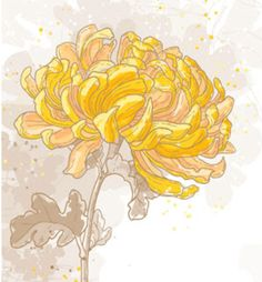 Having fresh flowers in different areas of your home always adds wonderful yang energy, but they are particularly beautiful as an offering to the deities on your altar. Chrysanthemums are an excellent flower choice for your altar.