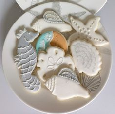 Sea shells for a friend