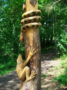 Chainsaw carved Frog and a Snake at Thornley woods