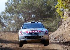 Peugeot 206 WRC 2002 (8)