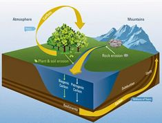 How rivers regulate global carbon cycle | Geology Page
