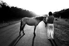 Wild horses in Vieques, Puerto Rico | Jarno Jussila. Photo from www.jarnojussila.com.