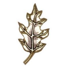 Michael Healy Maple Leaf Oiled Bronze Doorbell Ringers from ...