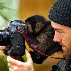 Excelente foto!