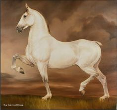 Carnival horse - Jamie Corum one of my besties art.. She is amazing!!