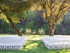 Forest Wedding Venues Redwood Forest Wedding Venues Northern California