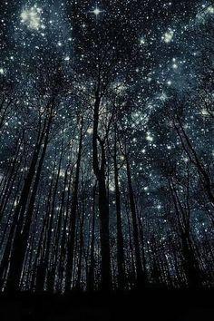 """A veces la solución está delante nuestro. Efoca tu energía en la Solución y el universo que traerá la respuesta. """"No permitas que el bosque no te deje ver las estrellas"""" Cuando menos te lo esperas...aprarece la Mágia que nos regala la Vida"""