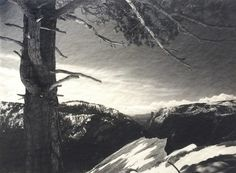 Ansel Adams, On The Heights, ca. 1927, Michael Dawson Gallery