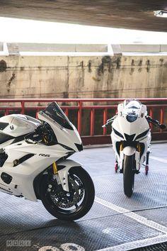 Yamaha Yzf R, Yamaha Sport, Gp Moto, Custom Sport Bikes, Bike Pic, Cafe Bike, Futuristic Cars, Bike Parts, Super Bikes