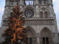 Notre Dame de París - DIC 2008.