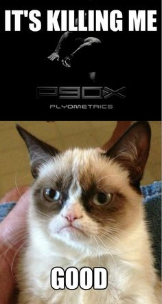 I can totally sympathize...Grumpy Cat, P90X
