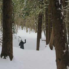 Clarington, Ontario, Canada. Nature hike through the snowy forest. Flights+Barrels travel photography