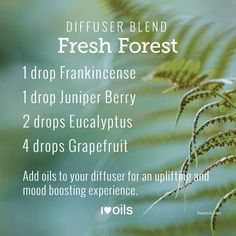 This is a great diffuser blend to cleanse and invigorate. It smells like a day in the forest. Love it!