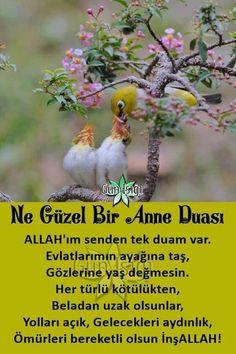 Anne duası Karma, Diy And Crafts, Islam, Words, Anne, Education, Iphone, Onderwijs, Learning