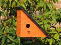 Amish Wooden Shapz Right Triangle Birdhouse
