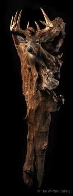 Earl Martz ~ Wood Sculptures                                                                                                                                                     More