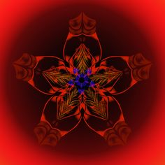 épanouissement de la fleur ; blooming flower ; florescente Mandala de Pierre Vermersch Digital Drawings
