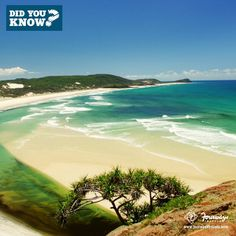 #SomethingAboutAustralia: The freshwater lakes in Fraser Island are one of the cleanest lakes in the world! Repin