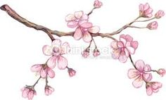Resultado de imagen para arbol del cerezo dibujo